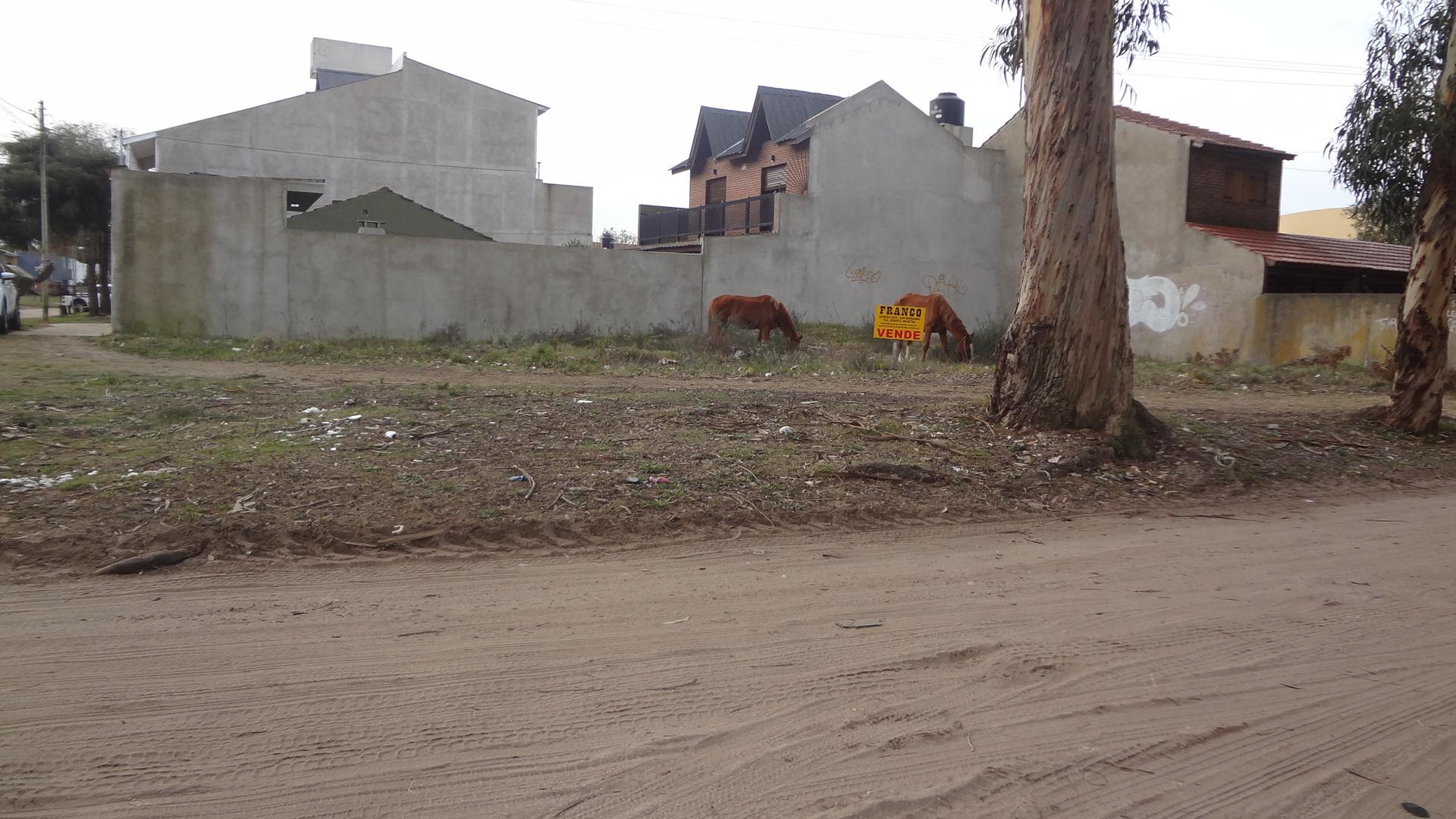 ID 171 SAN BERNARDO LOTE BALDIO SALTA Y STROBEL
